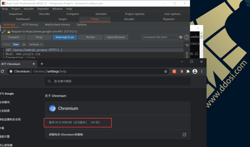 图片[2]-BurpSuite2020.12破解版下载 build5207 cracked-思安阁